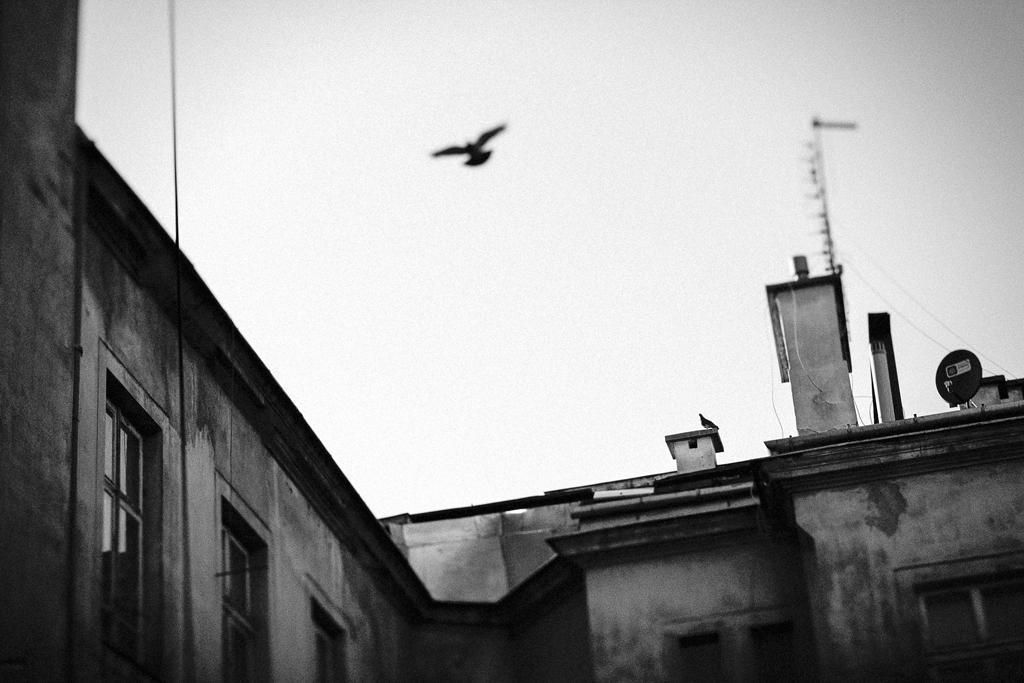 warsaw21©mirbach_HR