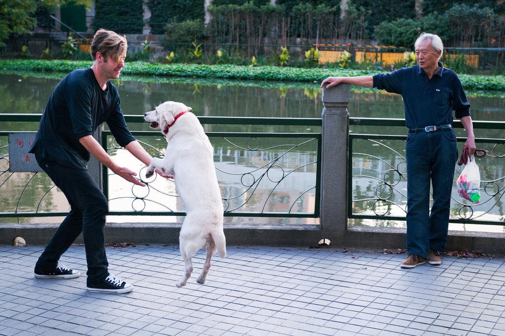 daniel-pannemann-jumping-dog-shanghai-mike-o-meally