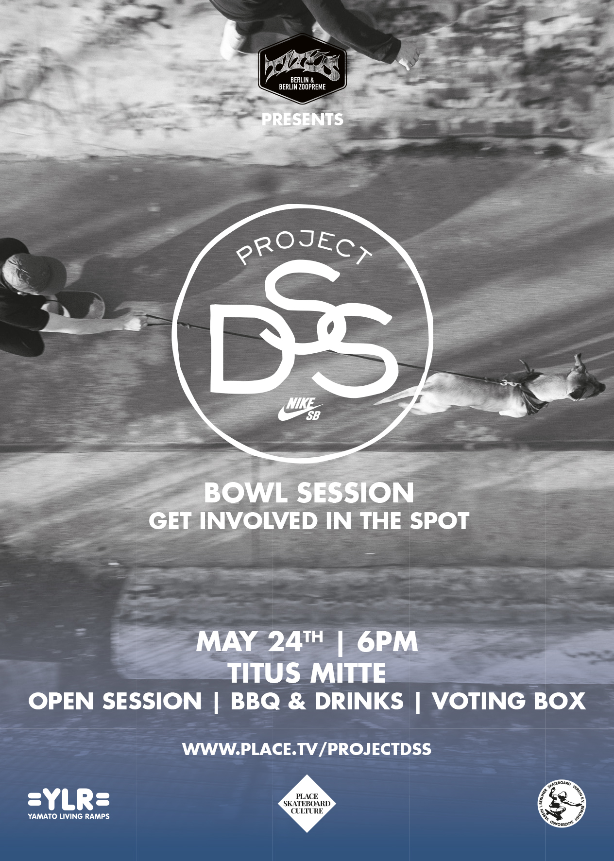 DSS-Project-Session2-Flyer-A6.indd