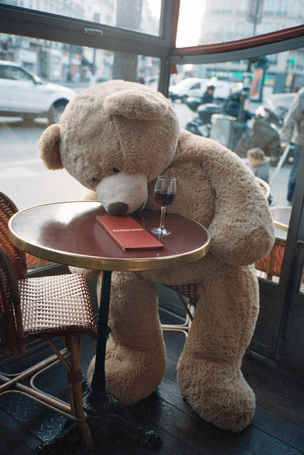 This bear was a real asshole after a few drinks.